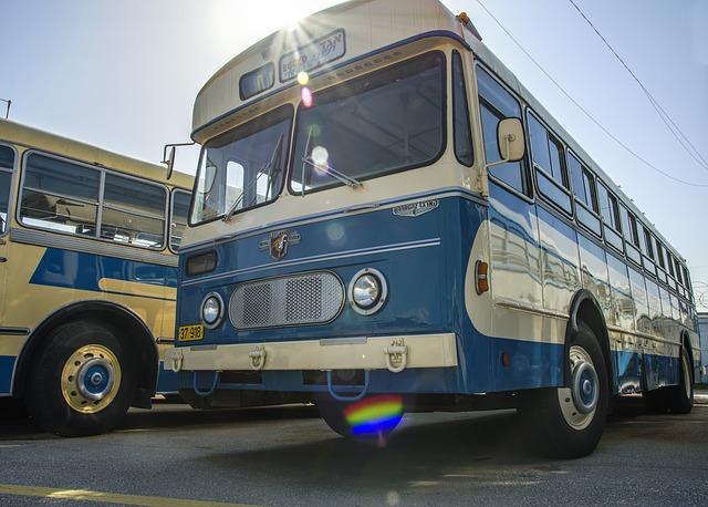 Dreamdiary bus