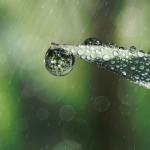 【夢占い】雨、濡れる、シャワー
