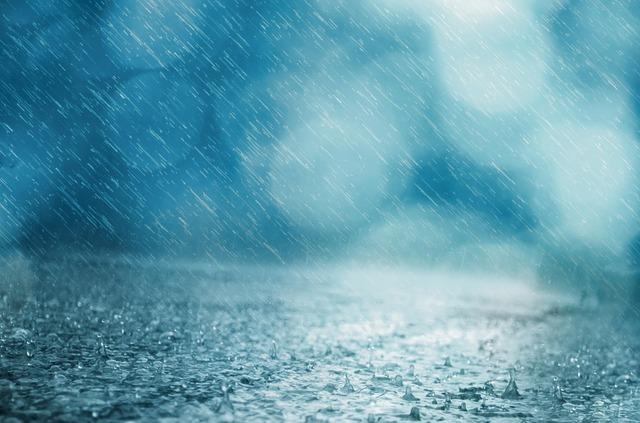 dreamdiary-rain