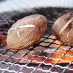 【日本製】丸十金網の『セラミック網焼き』が寒い季節にピッタリで安価なのに優秀だった